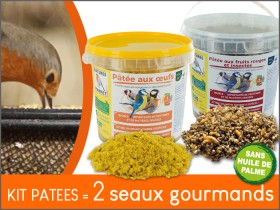 KIT PATEES : 2 seaux gourmands