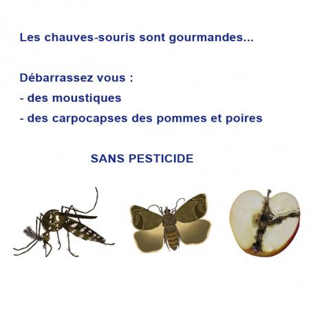 Nichoir CHAUVES-SOURIS Nature Market Autres animaux