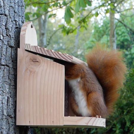 Mangeoire Ecureuil pour écureuils et/oiseaux Natures Market -Oisillon.net- fabriquée en France