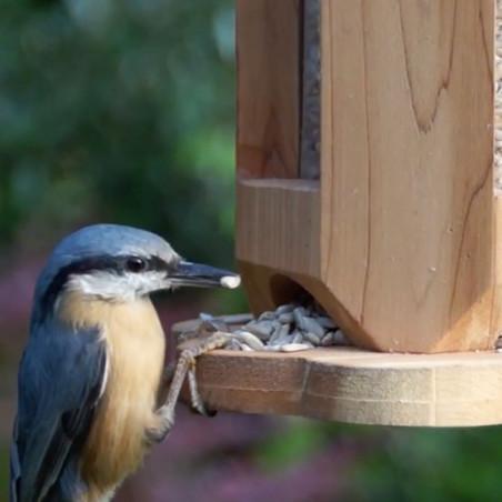 Mangeoire Petite Fleur Nature Market Mangeoire oiseaux pour graines