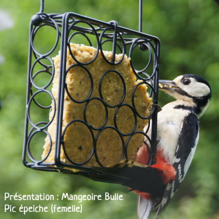 Repas de graisse végétale sans huile de palme pour oiseaux Natures Market