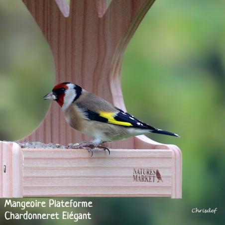 Graines de tournesol décortiqué pour oiseaux Natures Market -Oisillon.net-