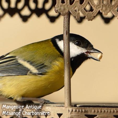 Tournesols décortiqués Nature Market Graines pour oiseaux