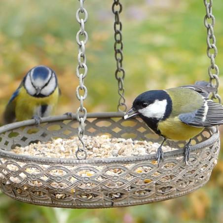 Mangeoire  GRAINES et EAU pour oiseaux Natures Market -Oisillon.net-