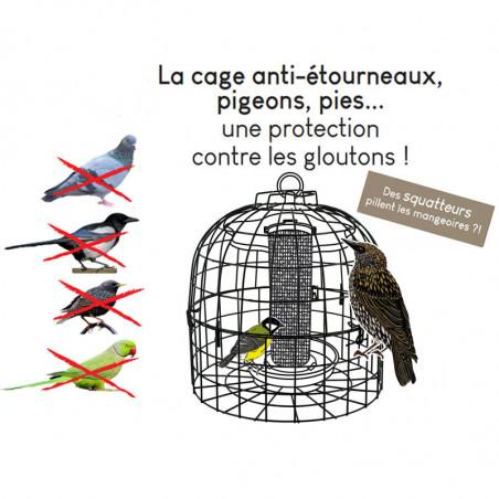 Grille cage anti étourneaux Natures Market -Oisillon.net-