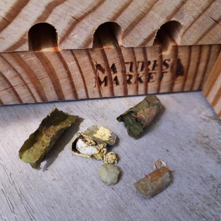 Hôtel à ABEILLES solitaires  MAYA Natures Market -Oisillon.net-