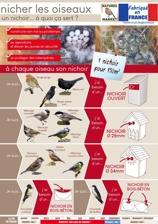 Choisir Un Nichoir Oisillon